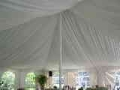 Rental store for Liner, Colonial.  40 x100 .  Pole Tent in Lansing MI